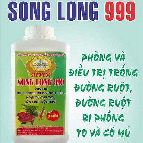 SL999-songlongkhanhhoa.com